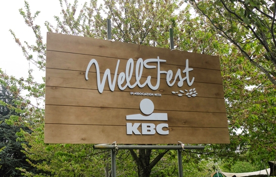 wellfest_web